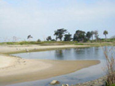 Ventura River Estuary, River Trail and Ocean Shore Trail